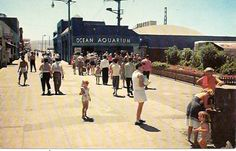In the late and the Hermosa Beach had, what at that time, was considered a state of the art Marine Aquarium - as reported in an article in t Ocean Aquarium, Marine Aquarium, California Homes, Southern California, Bullhead City, Monterey Ca, Hermosa Beach, Vintage Surf, Tampa Florida