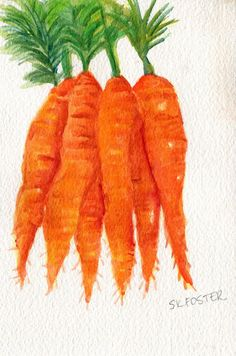 Bunch of  Little Carrots Painting watercolor by SharonFosterArt, $12.00