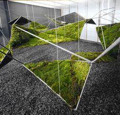 amazing landscape geometry