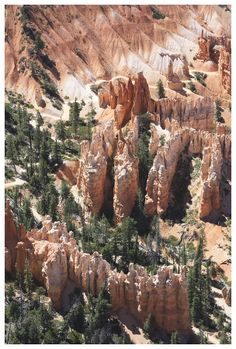 The famous hoodoos of Bryce Canyon in southern Utah rise from the floor of this natural amphitheate