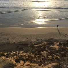 Lynn's shot at San Diego