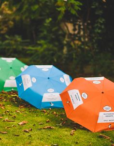 Welcome Autumn with a Penguin Collection umbrella. A third off until 9th October. Terms and conditions apply.