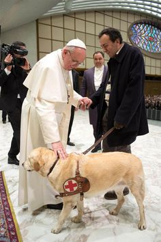 Pope Francis blesses a guide dog during a general audience in the Paul VI hall for members of the media at the Vatican on March 16.