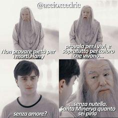 Harry Potter Comics, Harry Potter Tumblr, Harry Potter Anime, Harry Potter Fandom, Harry Potter World, Harry Potter Memes, Foto Meme, Reading Meme, Italian Memes