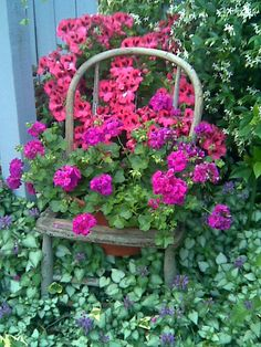 Google Image Result for http://www.uniquehg.com/wp-content/uploads/2011/08/Old-chair-planter.jpg