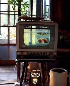 how many ppl owned this old tv?