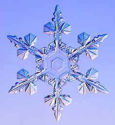 Snowflake captured by Kenneth G. Libbrecht using a specially designed snowflake photomicroscope.  Amazing!
