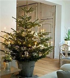 19 Stunning Rustic Christmas Decorating IdeasHere's a collection of Rustic Christmas Decorations: Brown and earthy are not your usual Christmas theme, but this year, try something new with the rustic mood that wood and nature provide. It will make your house more down-to-earth and much…