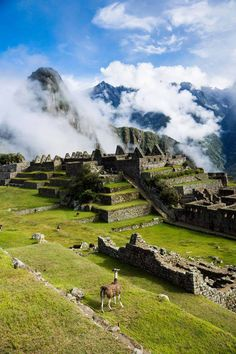 Machu Picchu up in the clouds by Tobias Mayr Machu Picchu, Cusco, Peru Machu Picchu, Places To Travel, Places To See, Beautiful World, Beautiful Places, Amazing Places, Inka, Argentine, Ushuaia