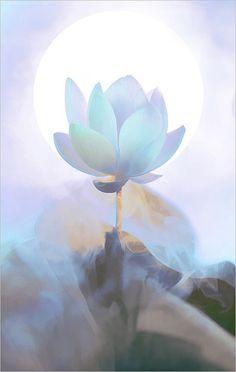 Lotus Flower Surreal Series - DD0A1608-2-1000-bz by Bahman Farzad, via Flickr