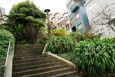 8 things to do solo in SF staircase san francisco