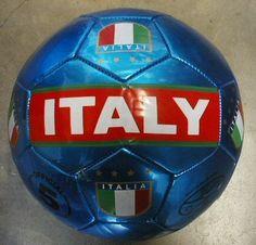 "Italy National Team ""Metallic"" Soccer Ball . $20.00"