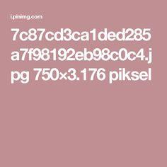 7c87cd3ca1ded285a7f98192eb98c0c4.jpg 750×3.176 piksel