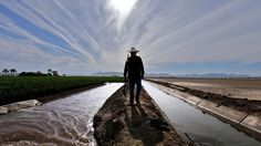 Shrinking Colorado River is a growing concern for Yuma farmers — and millions of water users  http://www.latimes.com/nation/la-na-sej-colorado-river-arizona-20150719-story.html#page=1 [NICE SKYLINE]