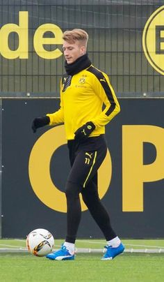 Prince and the Bees of Dortmund