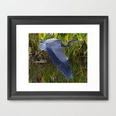 Blue Flyer 2 Framed Art Print by Richard Shawn Faust - $31.00
