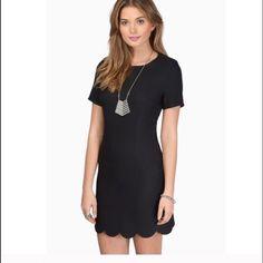 ❤️FINAL MARKDOWN❤️[BLACK DRESS] Adorable black dress w/ zip up back || brand new || never been worn Dresses