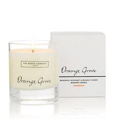 Orange Grove Signature Candle