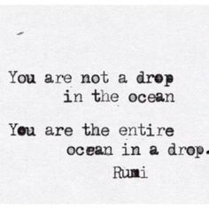You are not a drop in the ocean ......... Rumi