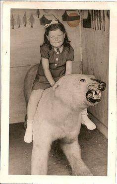 fierce polar bear: flickr: superbomba