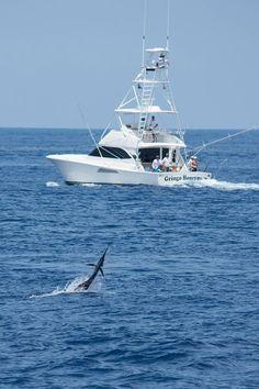 Jay fishing sea sport