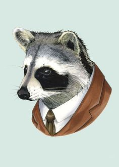 Raccoon art print 5x7 by berkleyillustration on Etsy, $10.00