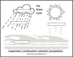 Learning Ideas - Grades K-8: Oceans and the Water Cycle for Kids
