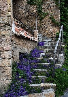 Tourtour, Provence.