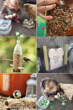 zelf #vogelvoer maken ideeën Fall Crafts For Kids, Diy Crafts For Gifts, Toddler Crafts, Diy For Kids, Crafts To Make, Fun Crafts, Acorn Crafts, Pumpkin Crafts, Winter Diy