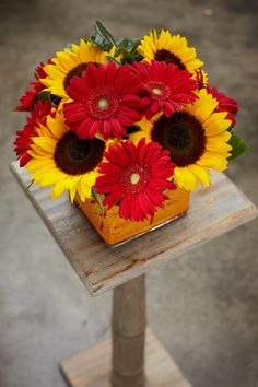Favorite flowers: Gerber Daisies and Sunflowers