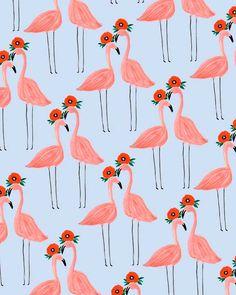 Flower Power Flamingos.