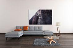 Dein Pferd auf Fotoleinwand #leinwand #leinwanddruck #wirdruckenkunst