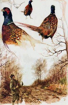 Lighthouse Art, Watercolor Sketchbook, Dutch Painters, Dutch Artists, Wildlife Art, Pheasant, Champs, Stencils, Hunting