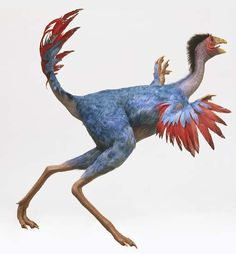 Best Evidence Yet That Dinosaurs Used Feathers For Courtship