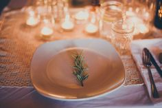 rosemary on plates // chelsea diane photography