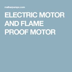 ELECTRIC MOTOR AND FLAME PROOF MOTOR