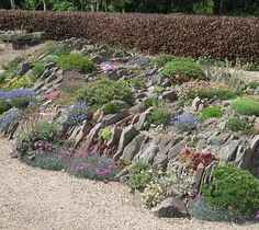 Pershore Garden Articles - Alpine Garden Society