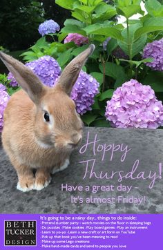Happy Thursday - Rainy Day Activites - thursday inspiration - bunnies - indoor activities