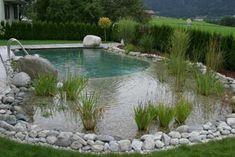 naturteich mit flachwasserzone für hunde!