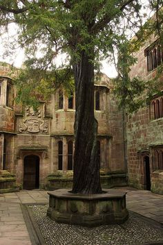 (By Blue Pelican - Skipton Castle - Conduit Courtyard. The yew tree you see here was planted in Setting for a courtyard in the Koatland castle in the valley. Beautiful Castles, Beautiful Places, The Places Youll Go, Places To See, Yorkshire Dales, Yorkshire England, North Yorkshire, England And Scotland, Ancient History
