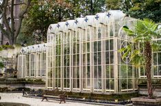 André's greenhouse was built to his own specification (naturally). Photo: Lloyd Stas