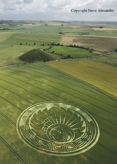 Do you think that the makers of these crop circles are just alien tattoo artists?! I mean damn. B-E-A-U-TIFUL!-BirdY