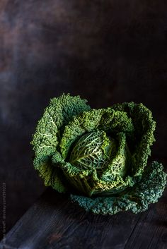 Beautiful Savoy Cabbage by Nadine Greeff - Stocksy United - Royalty-Free ...