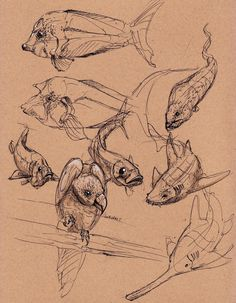 UPDATE   Concept aquatic creature thing:      Initial Sketches:           Painting of a Manta:          Peter Han (our Viscom 1 teacher) was...