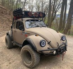 """Tiny House Beautiful on Instagram: """"Camping car ❤️ 🏡 - Follow (@tinyhousesbeautiful) for more 🏠 Follow (@tinyhousesbeautiful) for more 🏠 Follow (@tinyhousesbeautiful) for…"""" Sand Rail, Vw Classic, Bug Out Vehicle, Truck Camping, Off Road, Nature Adventure, Vw Beetles, My Ride, Custom Cars"""