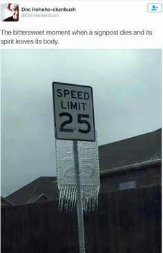 Dead speed limit sign