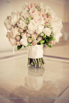I'm in <3 with David Austin Roses - so gorgeous!!!