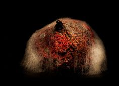 Estonian artist Heikki Leis, has created a series of other-worldly landscapes, titled 'Afterlife' - using nothing more than rotten fruit and veg: Beetroot Rotten Food, Rotten Fruit, Fruit Photography, Photography Projects, Leis, Fruit And Veg, Sci Fi Art, Natural World, Beautiful World