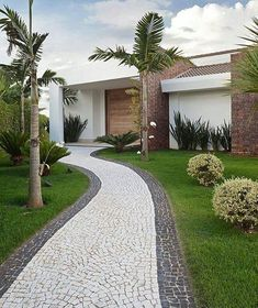 Palm Trees Landscaping Front Yard Landscaping Landscaping Ideas Farm Houses Big Houses Driveway Design Front Yards Casa Linda Mansions Homes Home Landscaping, Minimalist Garden, Front Yard Landscaping, Backyard Decor, Modern Landscaping, Modern Garden, Modern Garden Design, Backyard Decor Diy