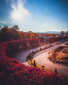 Schloss Schönbrunn, Vienna, Austria   Patrycja Kasprzycka   Instagram: @p.kasprzycka   Website: kasprzycka.at   #vienna #austria #architecture #city #travel #vacation #guide #europe #wonderlust #autumn #fall #colors #sun #sunrays #sunshine Vienna Austria, Autumn Fall, Sunshine, Country Roads, Europe, Vacation, Website, Architecture, City